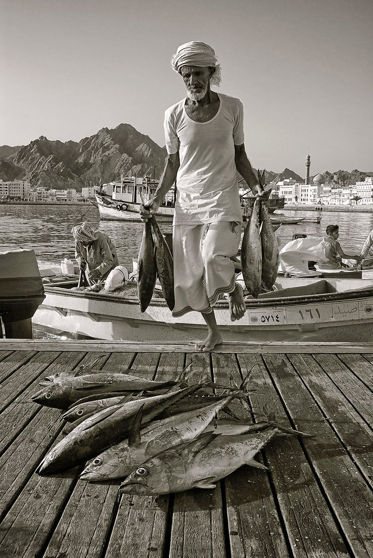 Retour de pêche à Mouttrah, Oman
