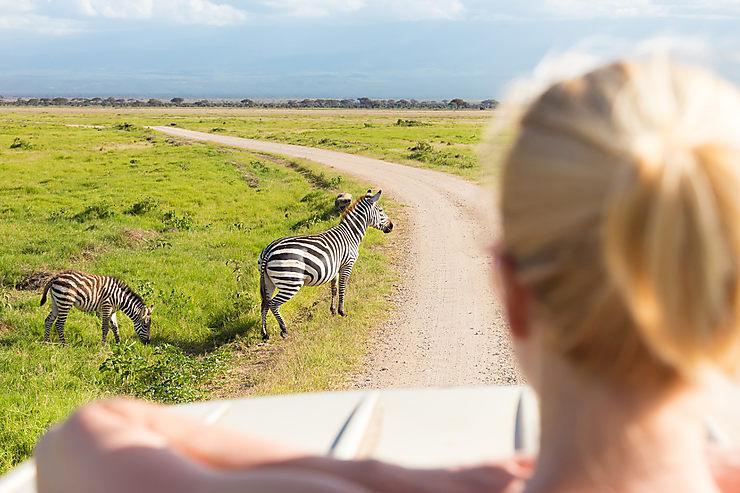 Tanzanie : réveiller l'animal en soi depuis les pentes du Kilimandjaro