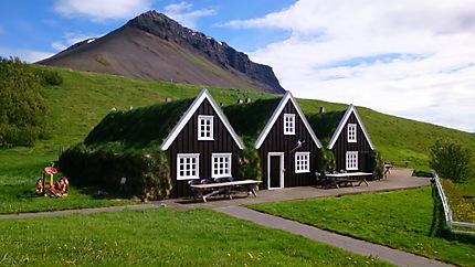 Maisons sous la mousse