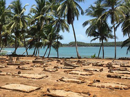 Cimetière marin sur l'Île Saint-Joseph