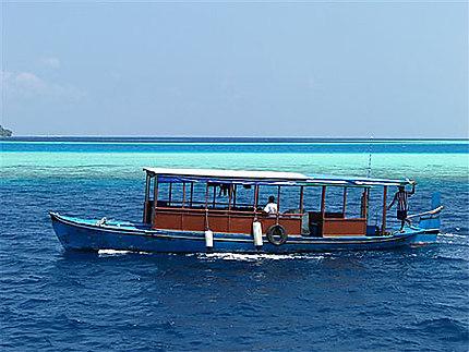 Dhoni aux Maldives