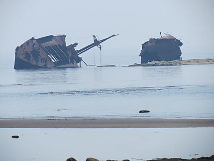 Navire échoué (1977)