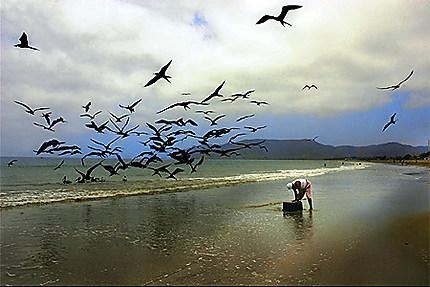 Pêcheur de Puerto Lopez