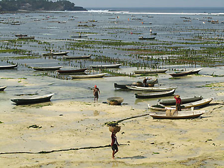 Nusa Lembongan et Nusa Penida : l'heureuse malédiction