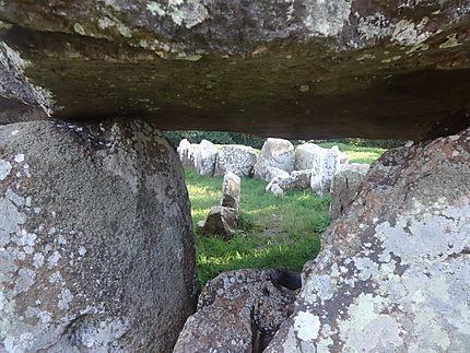 Un oeil discret sur le dolmen