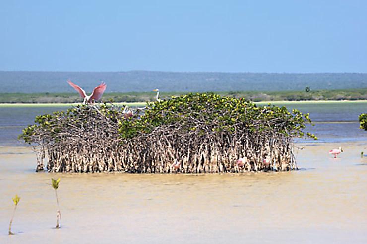 Barahona, la côte sauvage