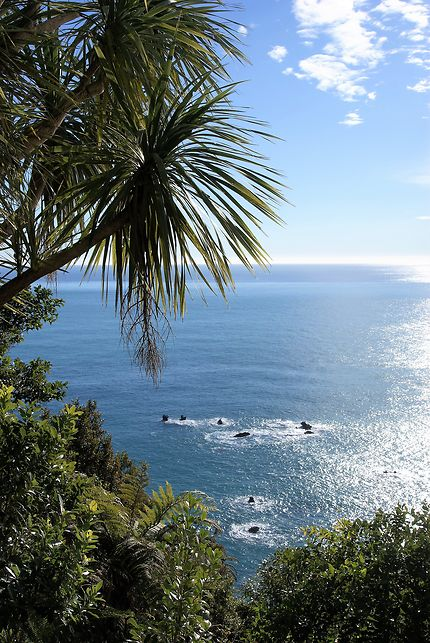 Nouvelle Zélande, les Alpes du Sud