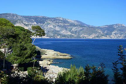 Paysage de Saint Jean-Cap-Ferrat