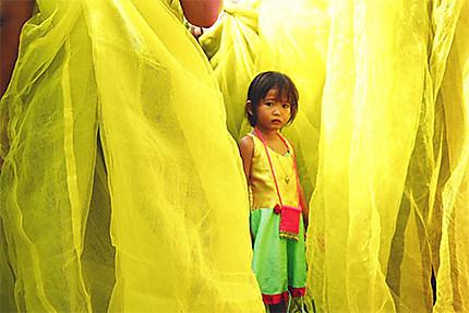 Festival des moustiquaires