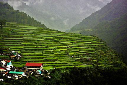 Bayyo Rices Terraces