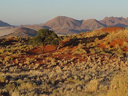 Le Namib s'embrase
