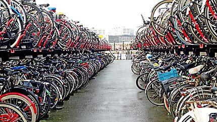 Bicyclettes en Hollande