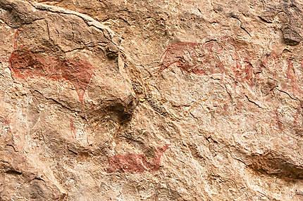 Peinture rupestre à Liphofung