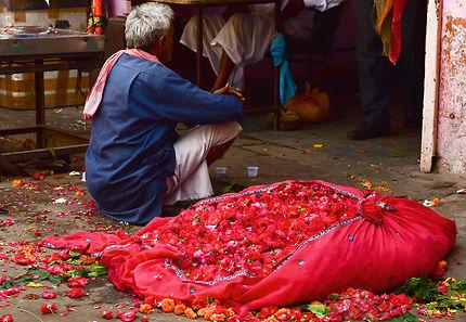 Marché aux fleurs à Jaipur