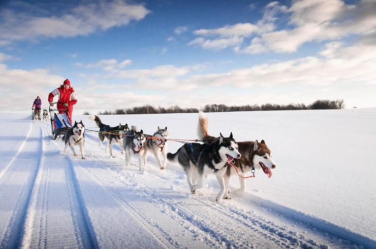 Traîneau à chiens - Canada, Laponie