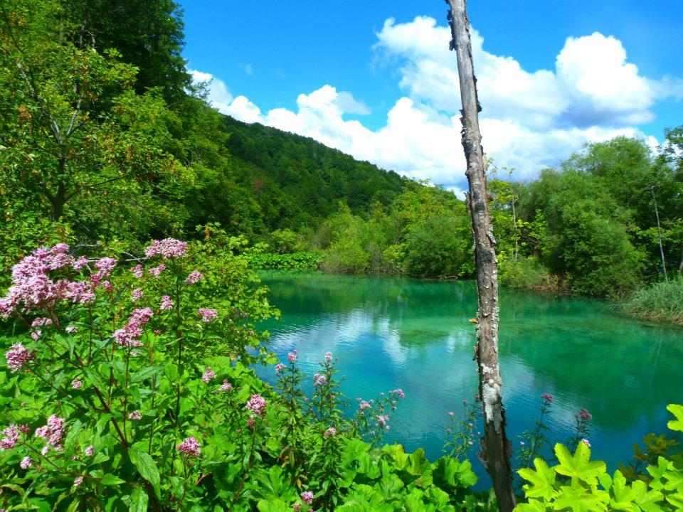 Lacs de Plitvice (Plitvička Jezera) - Croatie