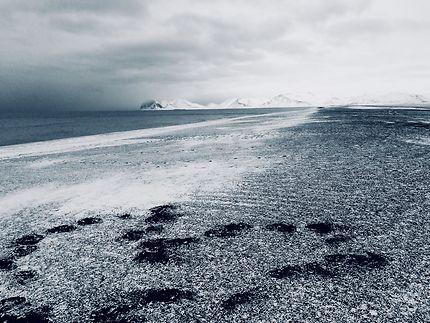 "Islande : véritable ""Coup de Coeur"""