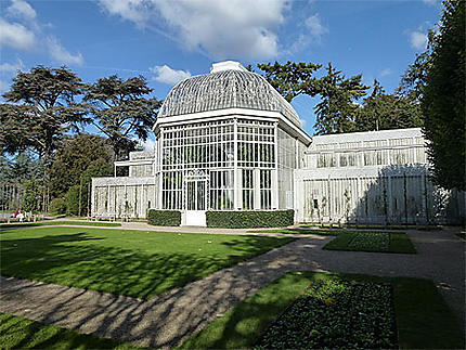 La Serre Jardins D Albert Kahn Musee Albert Kahn Boulogne