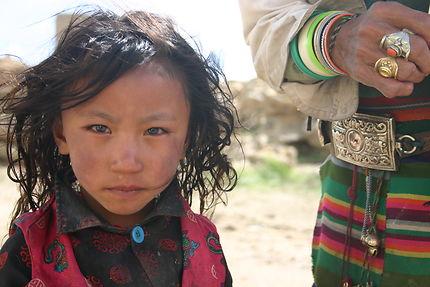 tibetaine