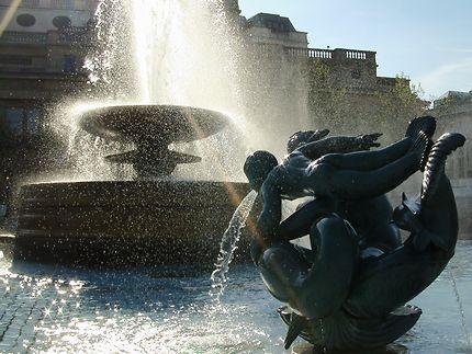 Fontaine à Trafalgar Square