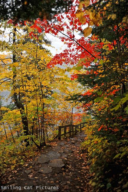 Les couleurs du Saguenay