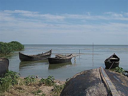 Sarichioi barques