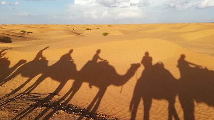 Ombres dans le désert tunisien