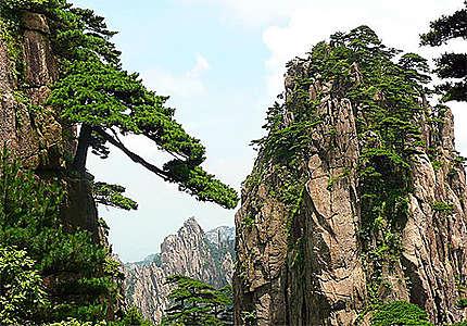 Montagnes HuangShan