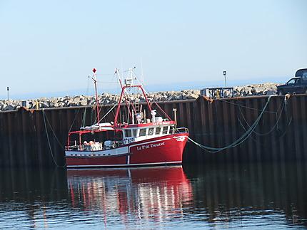 Crabier au quai de Rimouski