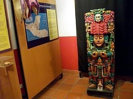 Musée au fort Casa K'inich