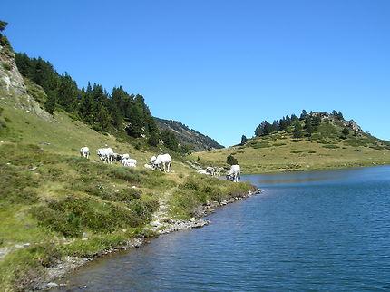 Lac de Rabassoles dans l'Ariège