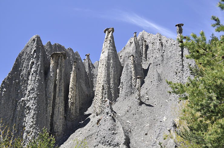 Les demoiselles coiffées de Théus (Hautes-Alpes)