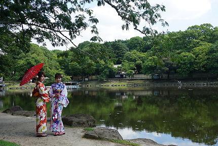 Découverte de Nara au Japon