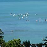 Surfeurs, le matin à Waikiki