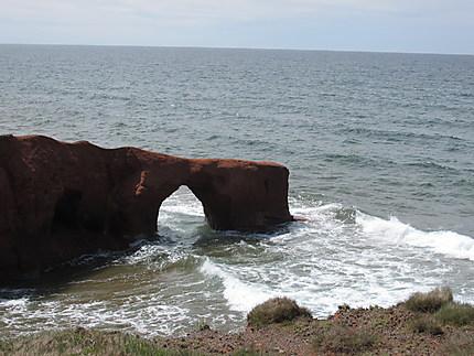 Arche aux Îles de la Madeleine