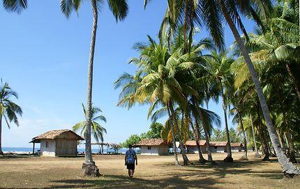 Cabanes sur la Playa Las Lajas, Panama