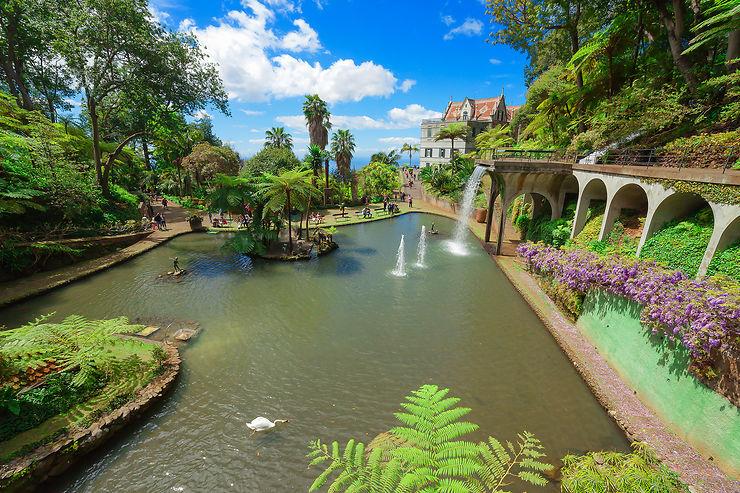 Faire un voyage botanique au Jardin tropical de Monte Palace