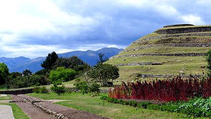 Parc de Puma Pumgo de Cuenca