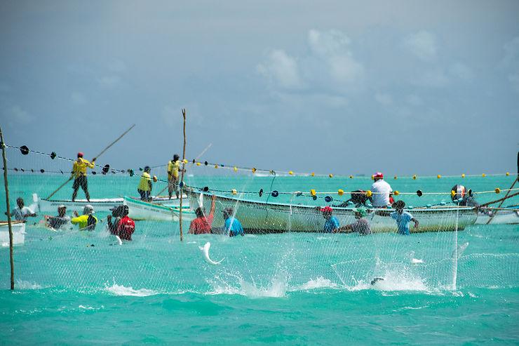 Rodrigues, l'île rouge et noire de l'océan Indien