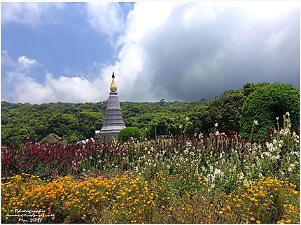 Parc de Doï Inthanon