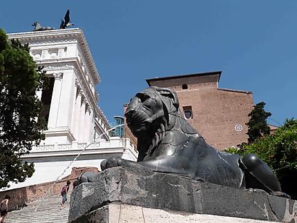 Lion - Montée au Musée du Capitole