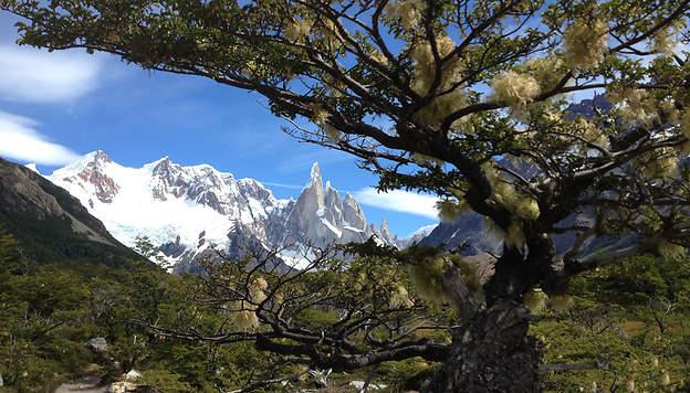 Récit de 3 semaines en Argentine sylvielibourne