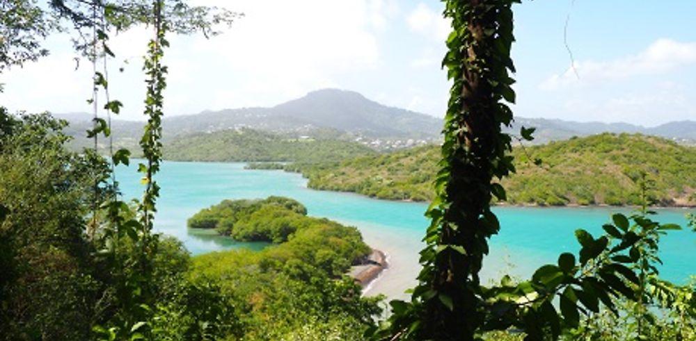 Compte-rendu 16 jours Martinique - janvier 2018