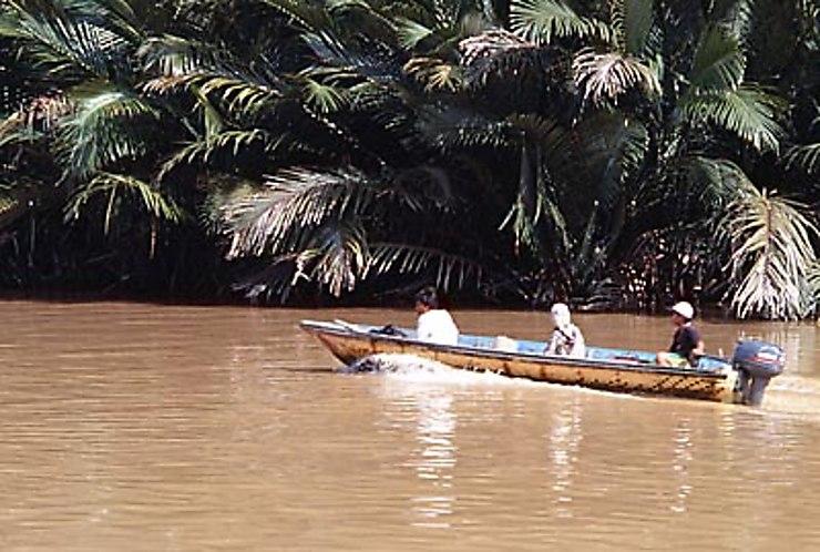 Excursion fluviale à Temburong
