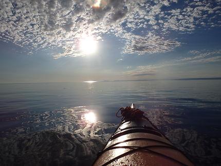 Sunrise - Rendez-vous avec les baleines