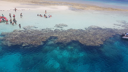 Recifs coralien à Hamata