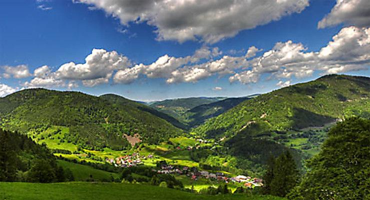 Top Allemagne : voyage en Haute Forêt-Noire FV59
