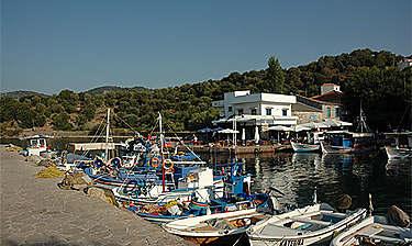 Lesbos (Égée-Septentrionale)