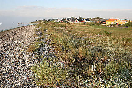 Le littoral de Brenderup
