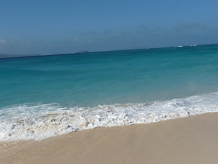 Îlot de sable blanc